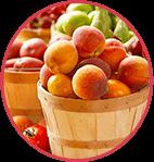 Fruchtextrakte